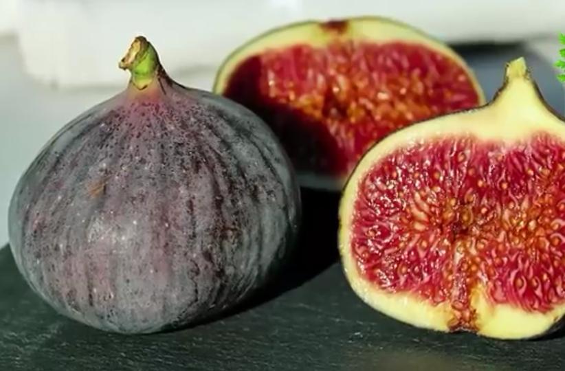 Higo, fruto de la higuera