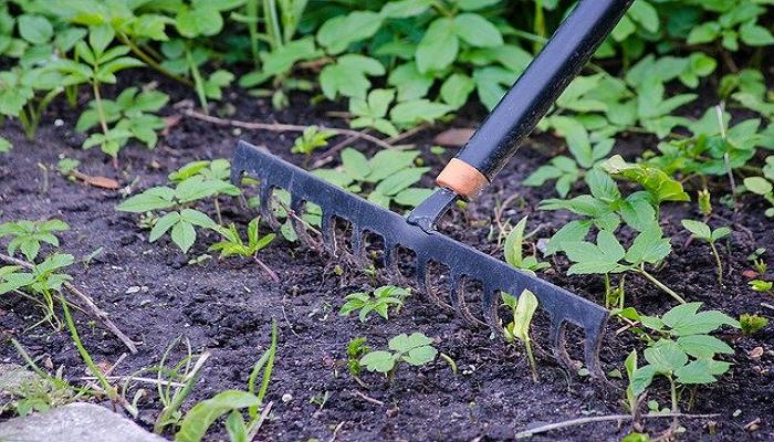 El rastrillo, una herramienta para huertos y jardines.